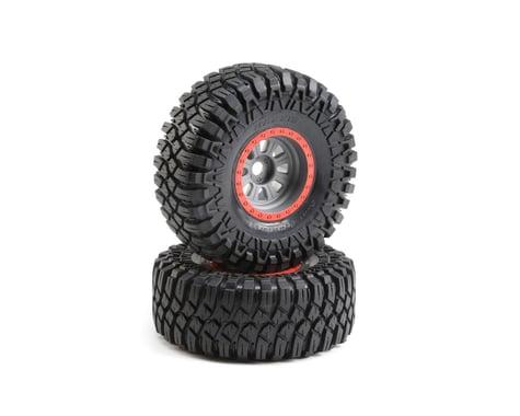 Losi Super Rock Rey Maxxis Creepy Crawler LT Mounted Tires LOS45029
